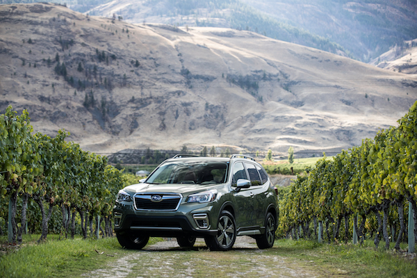 Seeing the Forester Before the Trees - Fleet Business